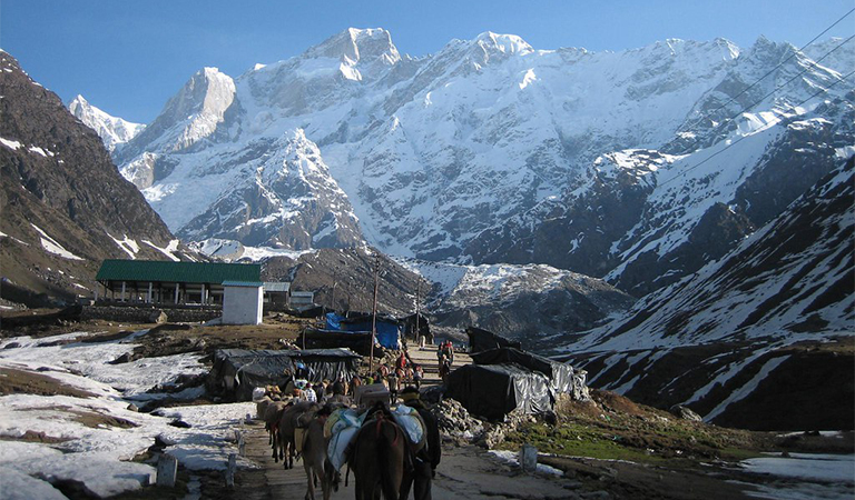 Kedarnath Trek Guide
