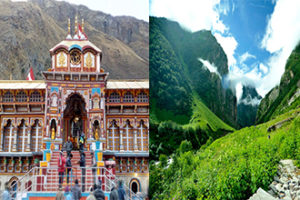 Badrinath Valley of Flowers