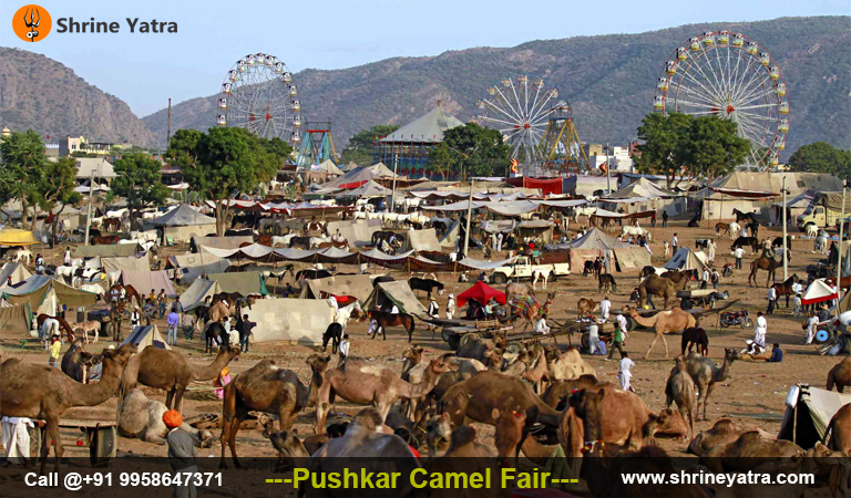 Pushkar Fair 2021