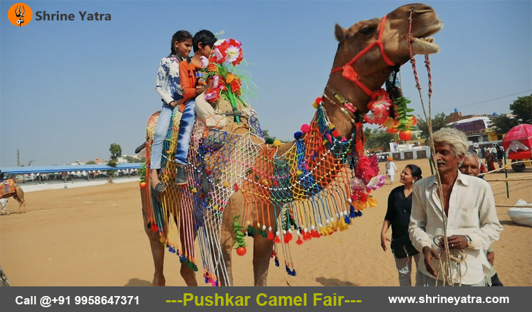 Pushkar Fair Package